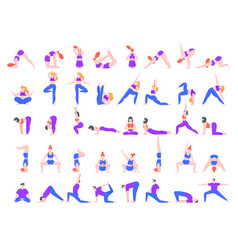 yoga asanas practice in yoga poses young people vector image