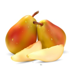 juicy pear vector image vector image