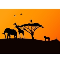 African sunset and animals vector image