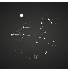 Astrology sign Leo on chalkboard background vector