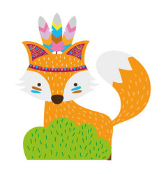 Colorful ethnic fox animal in back of bushes plant vector