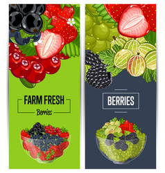 Farm fresh berry flyers set vector