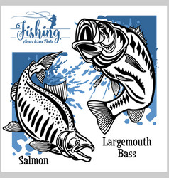 Largemouth bass and salmon fishing on usa vector