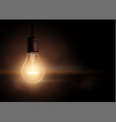 Light bulb in the dark vector
