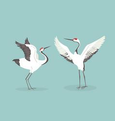 red crowned crane flaps wings cartoon vector image