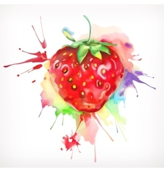 Watercolor painting ripe strawberries vector