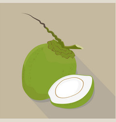 coconut isolated flat style vector image vector image