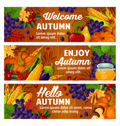autumn fall harvest and leaves banners vector image