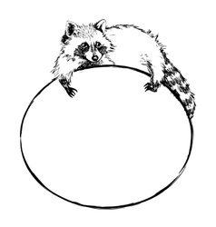 Cute raccoon lies on a round banner with blank vector image