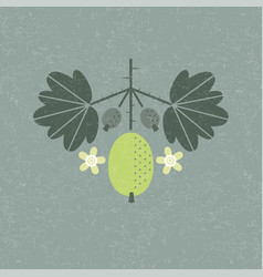 Gooseberry leaves flowers shabby vector
