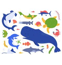 Sea animals species ocean animals vector