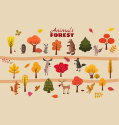 set of cute forest animals bear raccoon squirrel vector image