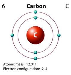 Diagram representation of the element carbon vector image vector image