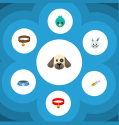 flat icon animal set of bunny puppy sparrow and vector image vector image