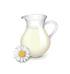 Glass jug with milk and chamomile isolated vector image
