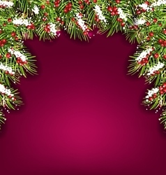 Holiday Background with Fir Branches and Berries vector image