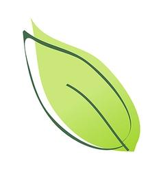 A foliage vector