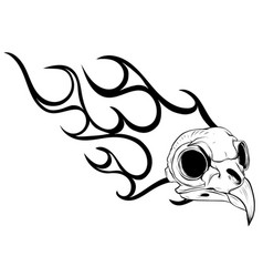 bird skull engraving bird vector image