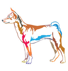colorful decorative standing portrait of basenji vector image