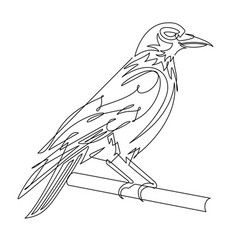 crow continuous line vector image