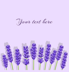 lavender background with shadows vector image