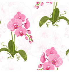 realistic phalaenopsis moth orchid floral pattern vector image