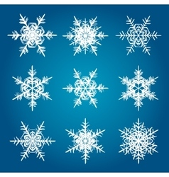 snowflakes white isolated on blue vector image vector image