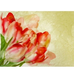 Old paper background with beautiful tulips EPS 10 vector image