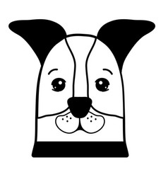 Contour nice dog a domestic mammal animal vector