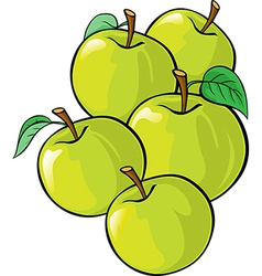 green apples isolated vector image vector image