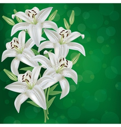 Greeting or invitation card with bouquet lily vector image vector image