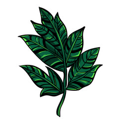 simple branch tree with leaves vector image