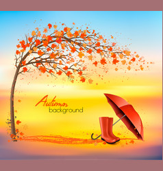 autumn nature background with trees and umbrella vector image
