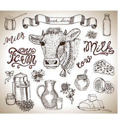 Design set with cow head mild and dairy vector