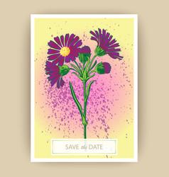 hand drawn close-up chrysanthemum flower artistic vector image