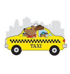 new york taxi dog vector image