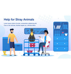 stray animals help in vet clinic banner vector image