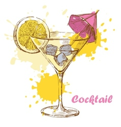 hand draw cocktail vector image vector image