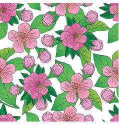 Apple blossom seamless pattern vector