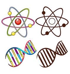 DNA structures vector