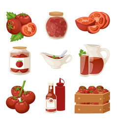 Fresh tomatoes with paste isolated on white vector