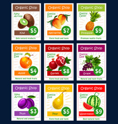 Fruits price cards set for fruit shop vector