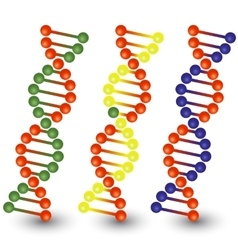 Seamless DNA strands vector image