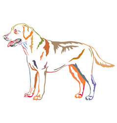Colorful decorative standing portrait of labrador vector