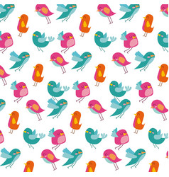 cute birds differents color pattern design white vector image