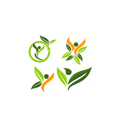 leaf health template set vector image