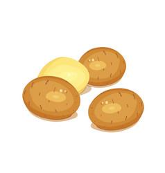 potatoes vegetable foodstuff vector image