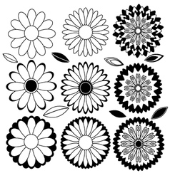Flowers black and white vector image vector image