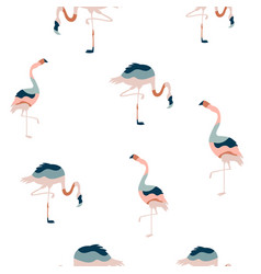 abstract seamless pattern with colorful flamingo vector image