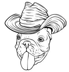 bulldog dog sombrero mexican hat portrait of vector image